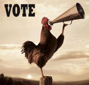 vote-today1